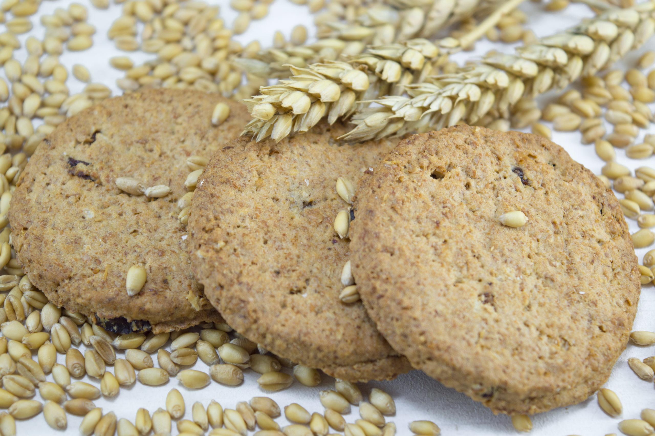 PepsiCo creará galletas con trigo sostenible proveniente de México