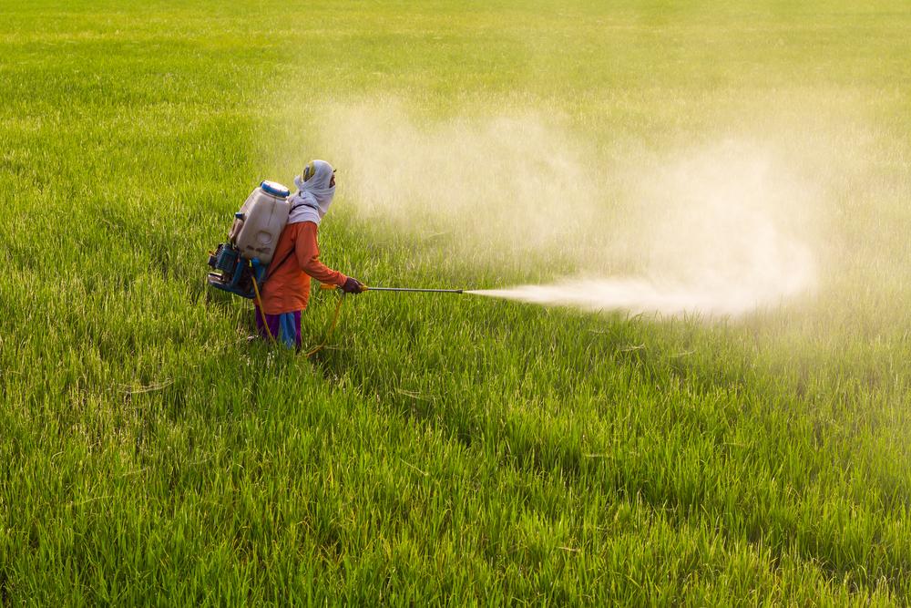 ¡Buenas noticias! México prohíbe el herbicida más dañino para el planeta: el glifosato
