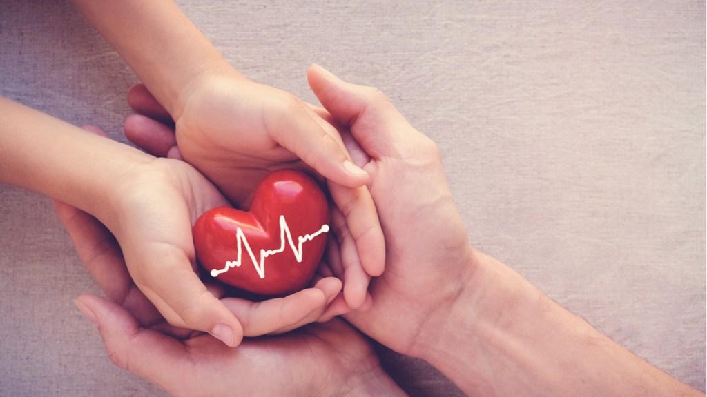 Donación de órganos: la importancia de ser un donador