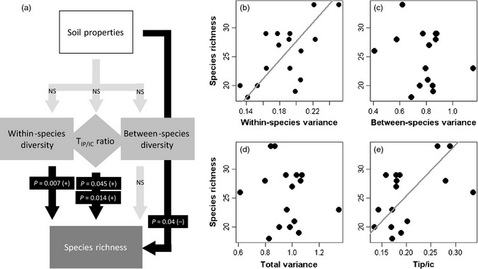 Species richness of limestone grasslands increases with