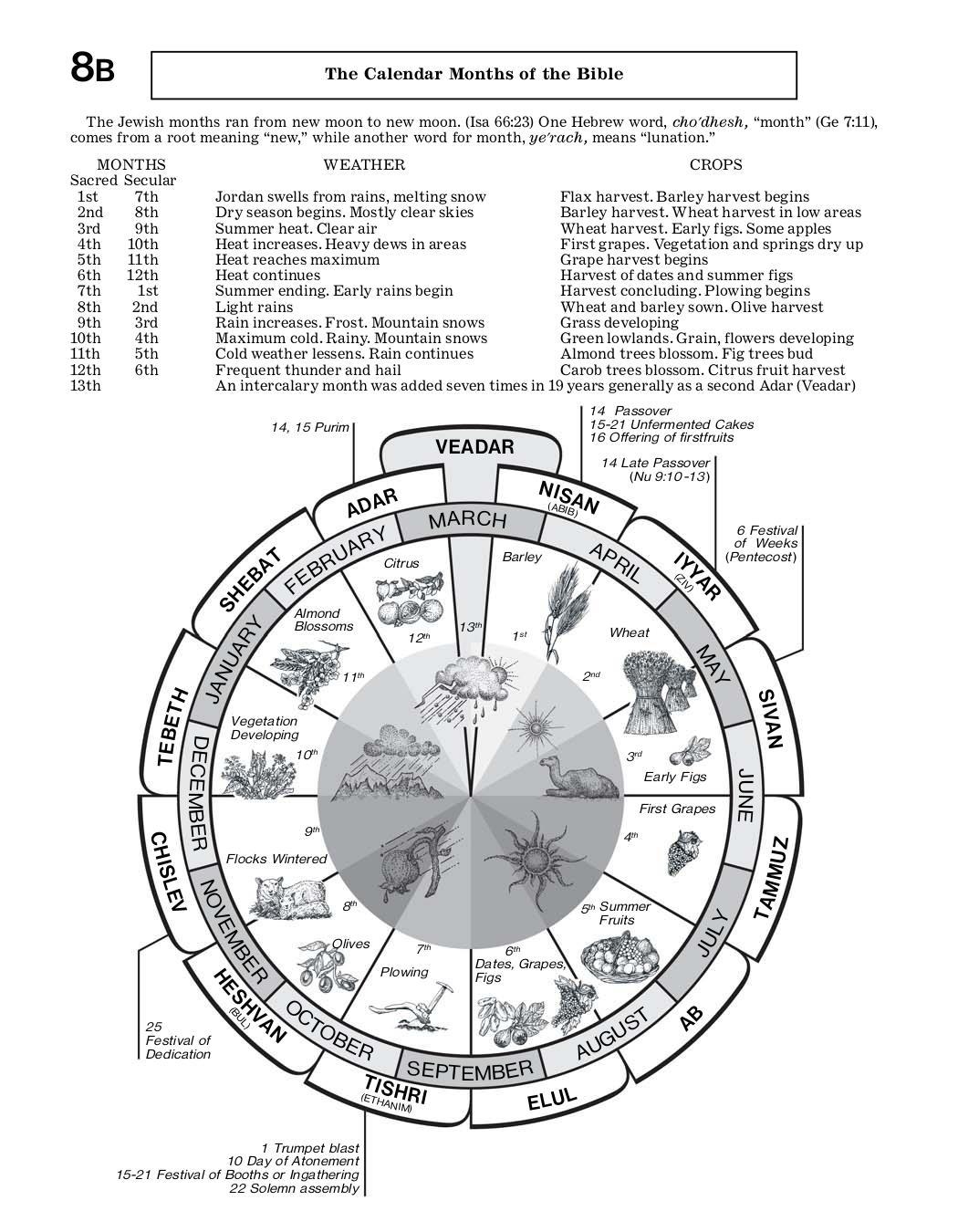 8B The Calendar Months of the Bible — Watchtower ONLINE