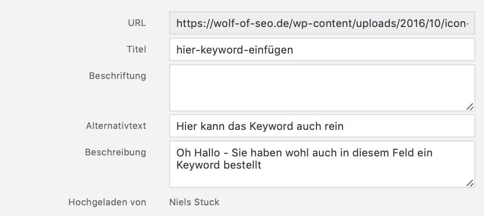 Bildschirmfoto 2019 04 24 um 18.01.01 - Wordpress Bilder optimieren – Bilder komprimieren in WordPress mit Plugin