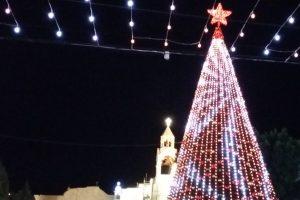 Weihnachtsbaum in Bethlehem im Hintergrund die Geburtskirche