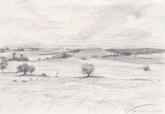 View from the Hadrian's Wall Study