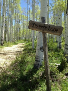 Trapper Loop Trail