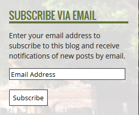 Ugly Subscribe button