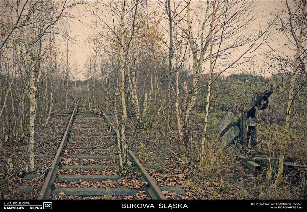 Linia kolejowa nr 307 Kpno  NamyswFotograf lubny Kpno Kluczbork