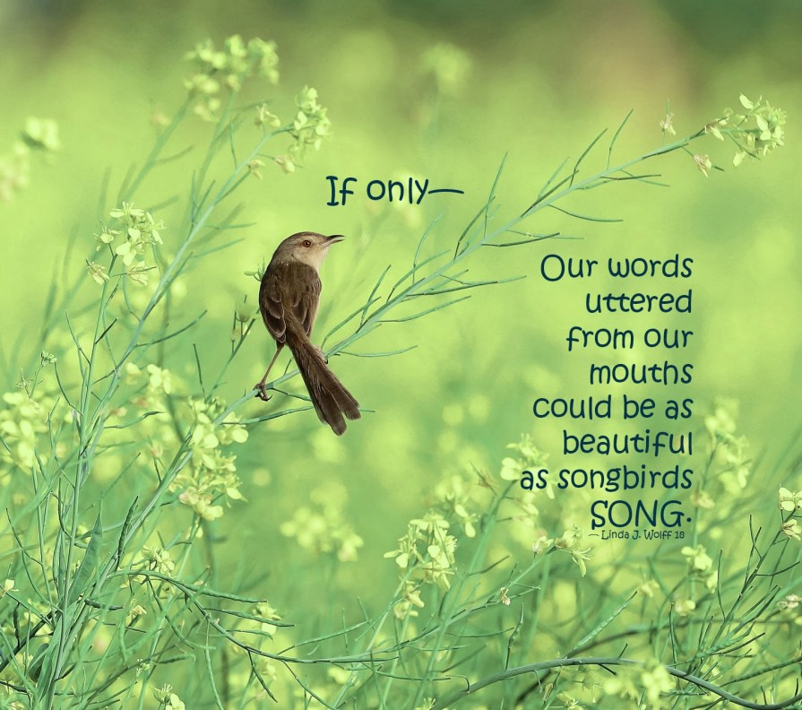 Free Verse Poem Songbirds and Words image