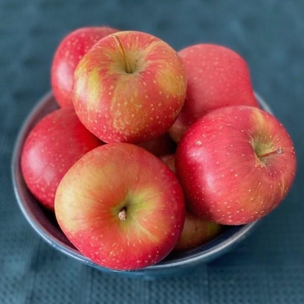Evercrisp-apples