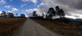 This is the road through our small farm where I grew up near Stutterheim...