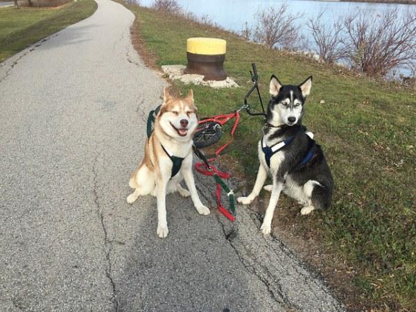Luna and Colt with kick bike