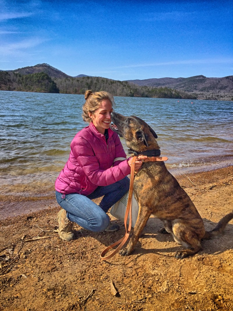 Personal Protection Dogs Give Peace Of Mind