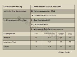 Alter, Ernährungszustand und Gewicht der in Schweden 2015 getöteten Wölfe (Quelle: Peuker)