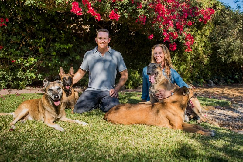 Who's Walking Who Dog Training and Wolf's Raw Food Family