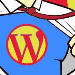 Yönetici harici WordPress Admin panelini yasaklamak