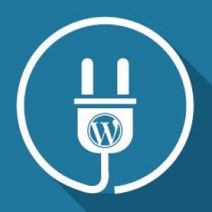 WordPress admin paneline özel widget eklemek