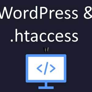 WordPress wp-content hack