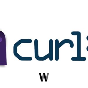 cURL ile son konumu almak