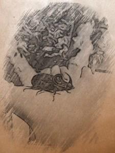 Isa und der Nashorn-Käfer - Lese- und Hörspielgeschichten für Kinder und ihre Eltern
