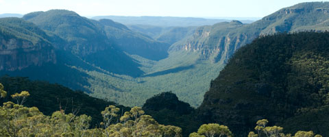 Grose Valley Wilderness