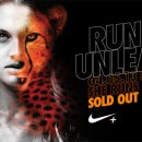 Nike She Runs the Night 2013 Sydney Route