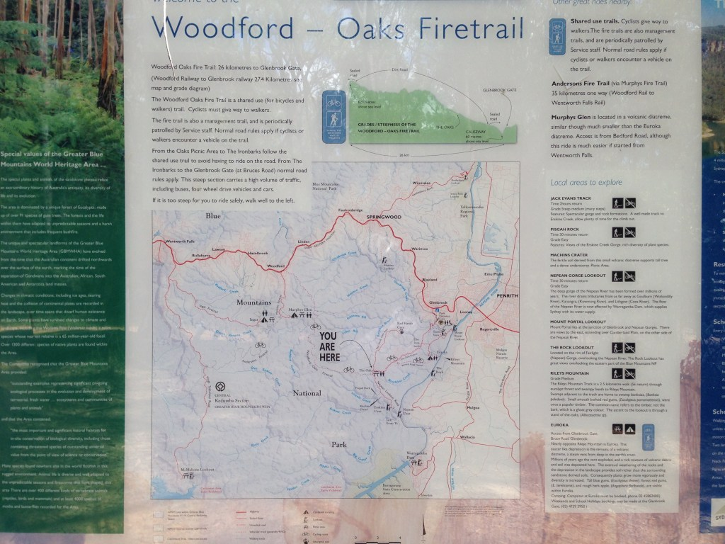 Mountain Biking Oaks Fire Trail