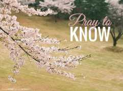 Pray to know (Good WORD Spread WORLD, excerpt from Pastor Jeong Myeong Seok's sermons)