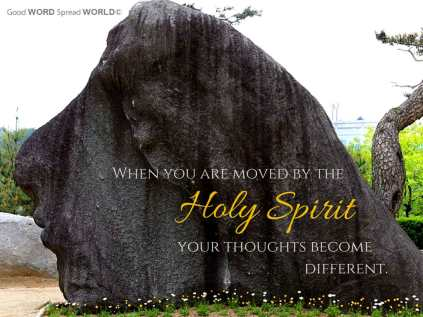 The Holy Spirit Rock (can you see the image of a woman's face?)