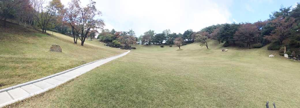 lawn-sanctuary-3