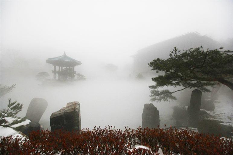Dense fog covering the Wolmyeongdong lake and pavilion