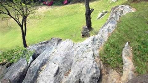 Camel Rock Wolmyeongdong