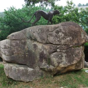 Cheetah Rock in Wolmyeongdong