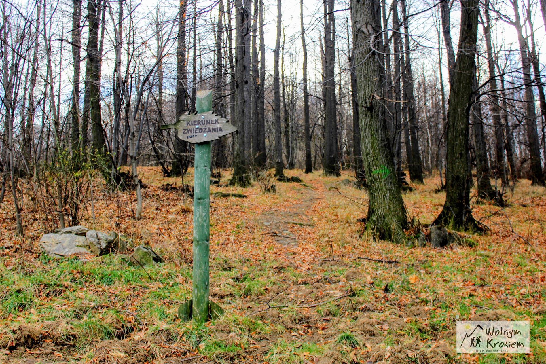 Szlak na Górę Parkową w Bielawie na Dolnym Śląsku
