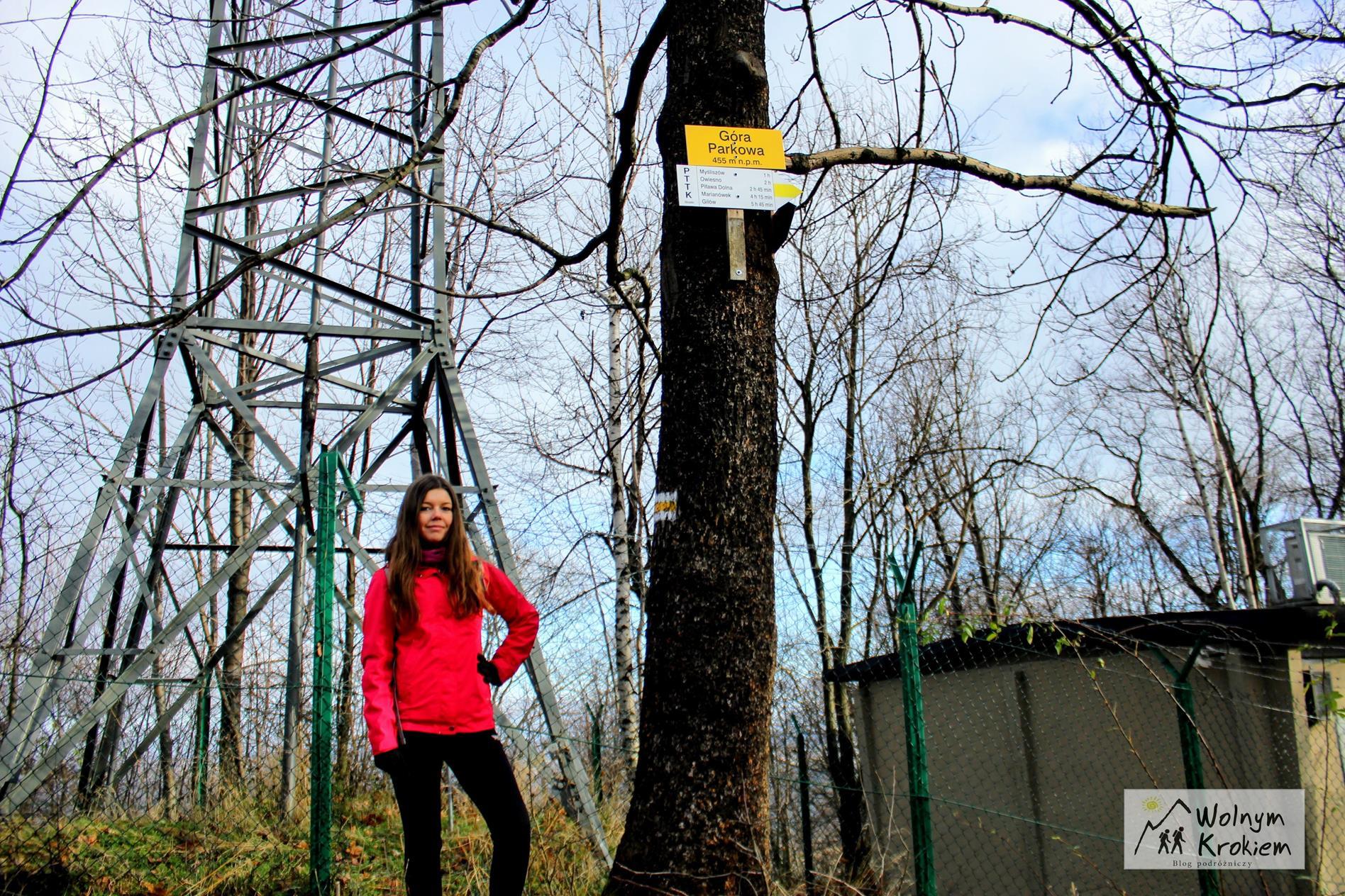 Tabliczka na szczycie Góry Parkowej w Bielawie na Dolnym Śląsku