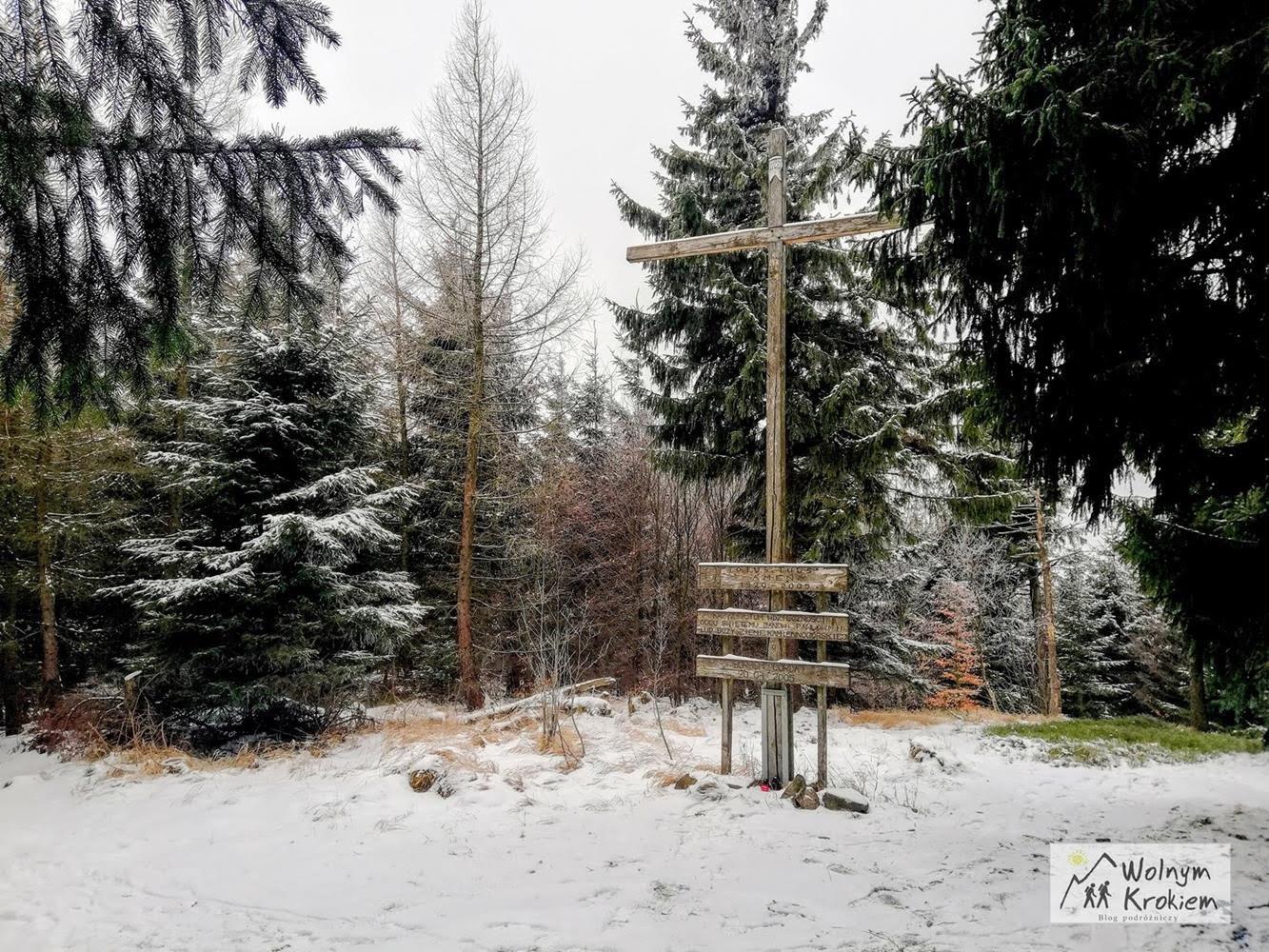Szlak ze Strużnicy na Wołek