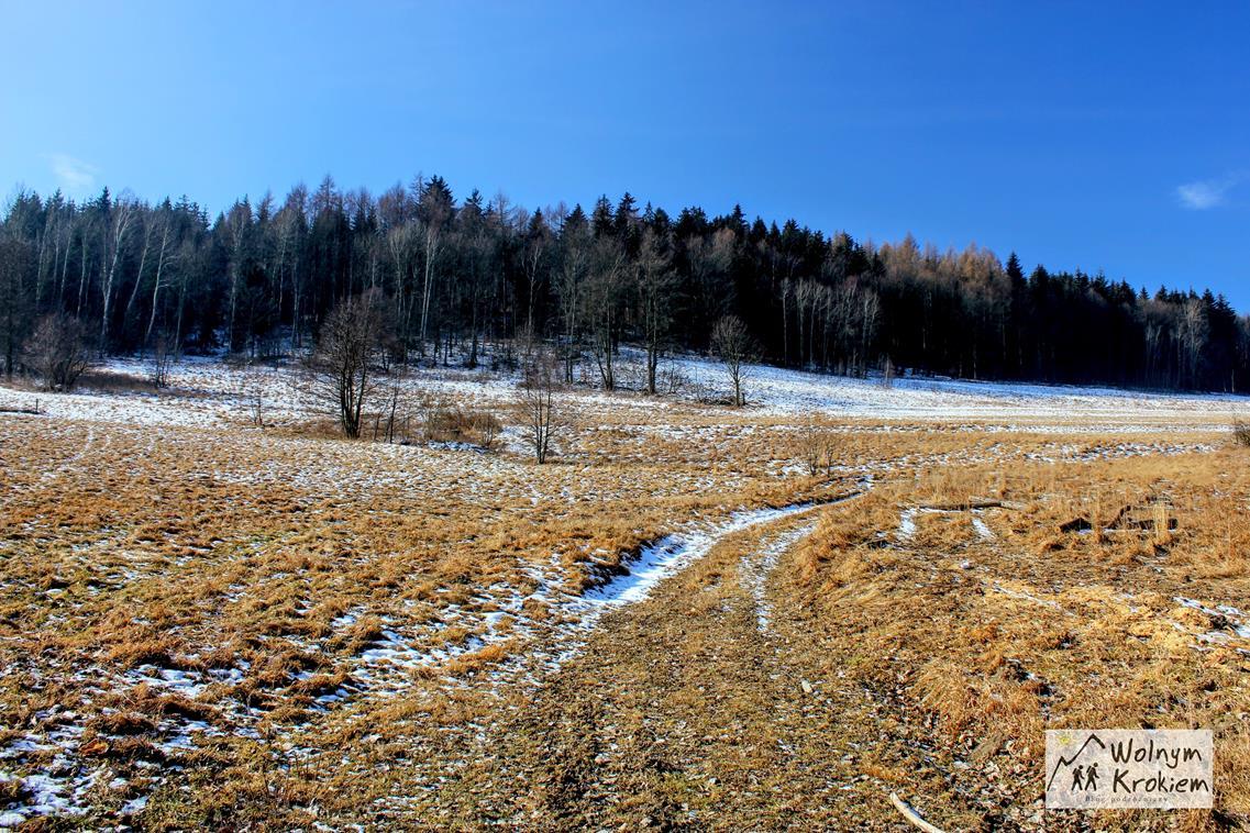 Szlak na Turzec - Sudecki Włóczykij
