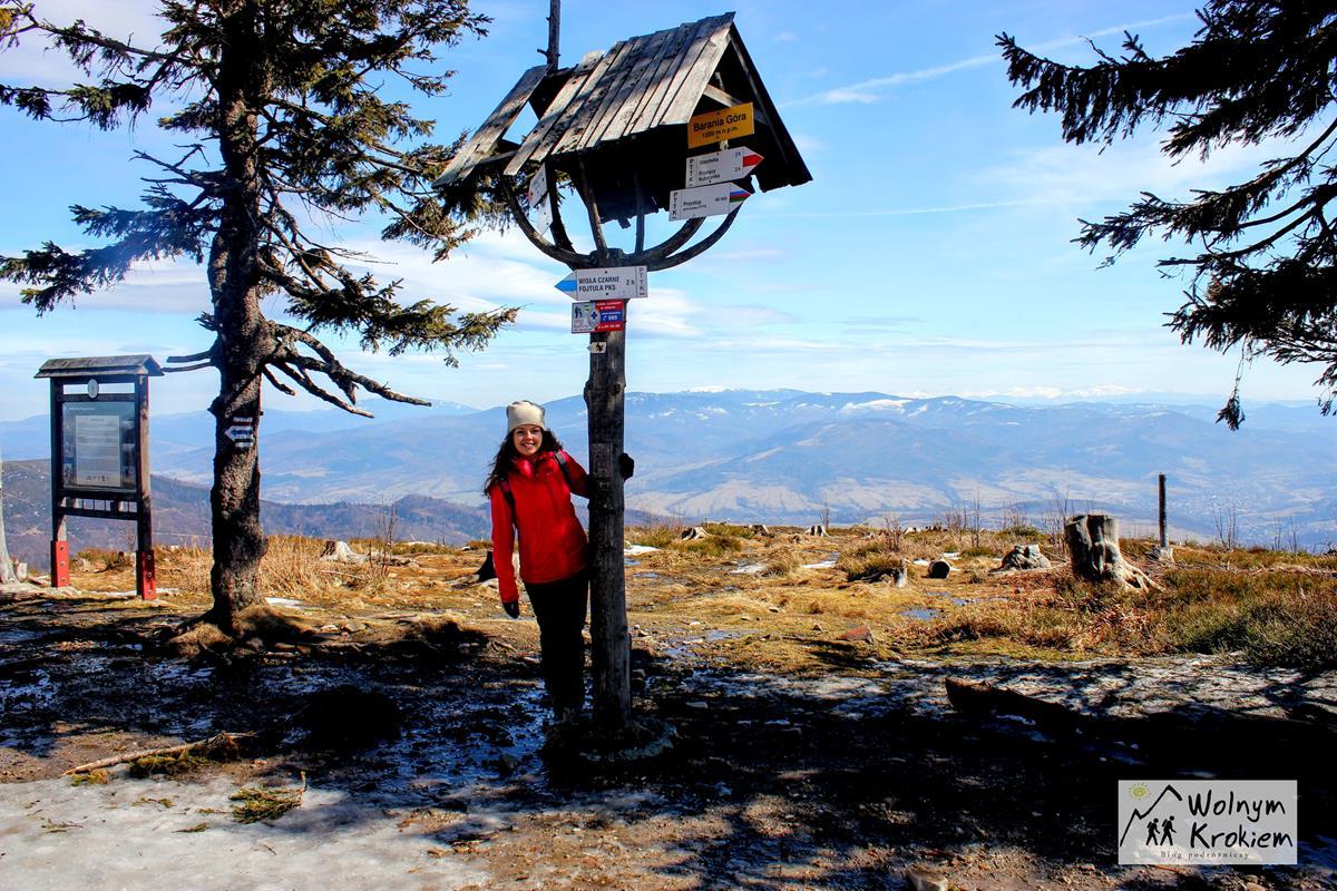 Szczyt Baraniej Góry w Beskidzie Śląskim