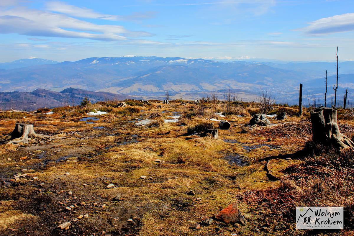 Widok z Baraniej Górze w Beskidzie Śląskim