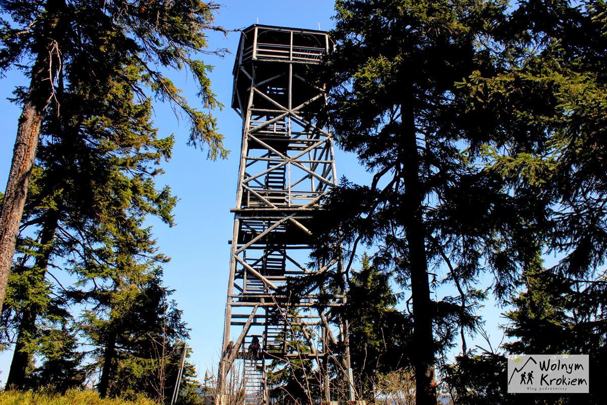 Wieza widokowa na Trojmorskim Wierchu