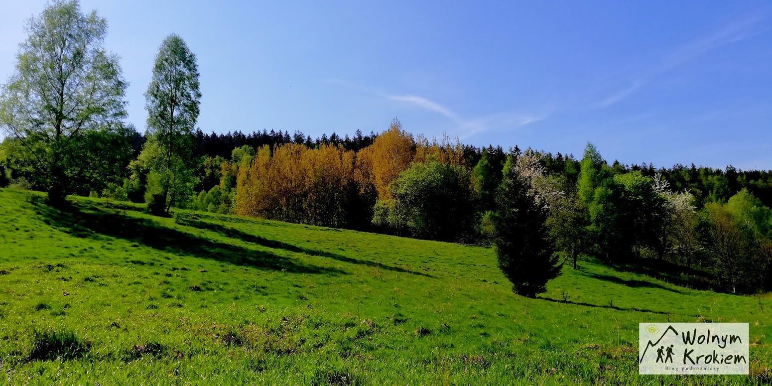 Szlak z Wolarza na Muflon