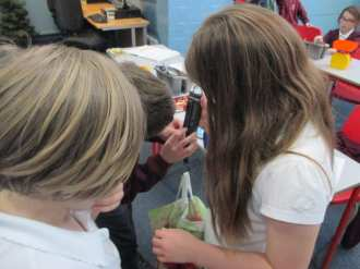 Y5 - Science experiment