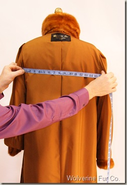 Measuring back of fur coat.