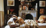 fur-throws-pillows-home-decor