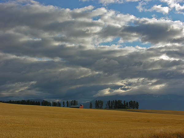 The disappearing rural landscape of Flathead County. Photo taken Sept. 2008 a few miles south of Kalispell, Montana. Copyright Ralph Maughan