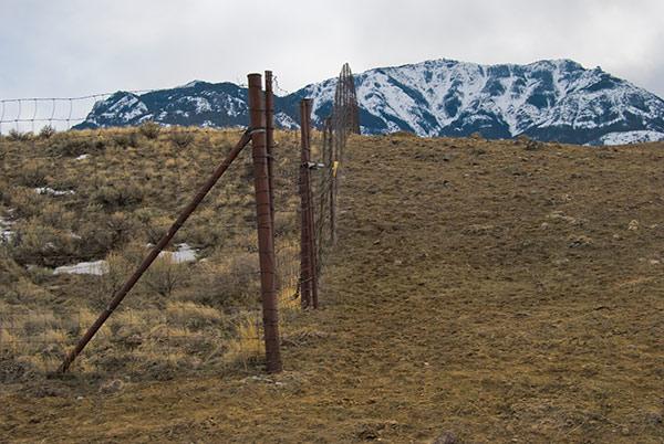 northern-range-exclosure