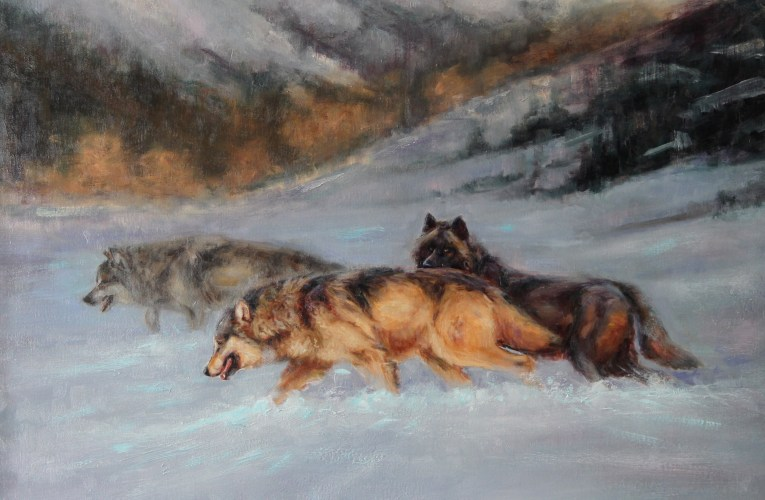 At this year's event – Speak for Wolves will be featuring the French artist Virginie Baude