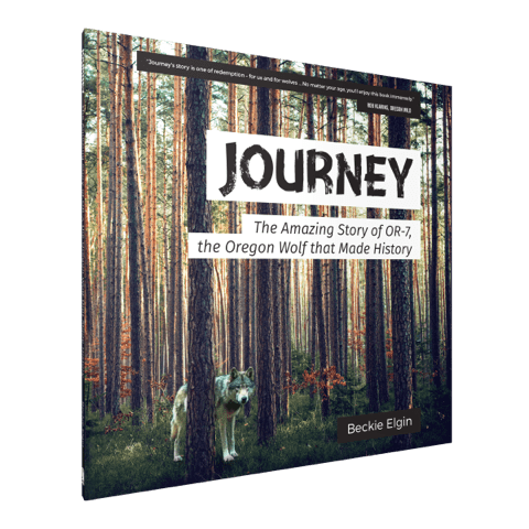 "The new book ""Journey"" documents the travels of wolf OR-7"
