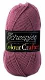 Wolzolder Scheepjes Colour Crafter 1067 Hoorn