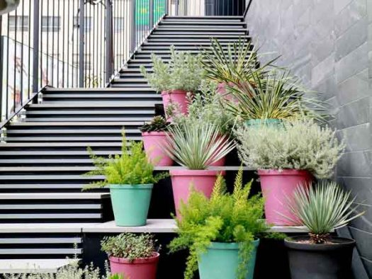 NOHGA HOTEL UENOのテラス席脇の階段の植栽