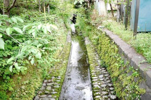 鎌倉の小さな川